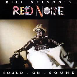Sound-On-Sound 1999 Bill Nelson's Red Noise