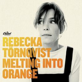 Melting Into Orange 2006 Rebecka Trnqvist