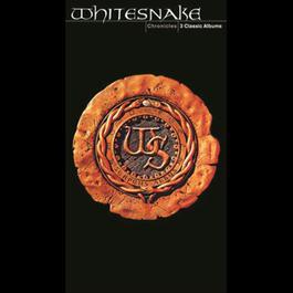 Chronicles 2009 Whitesnake