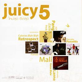 Juicy 5 2008 รวมศิลปินแกรมมี่