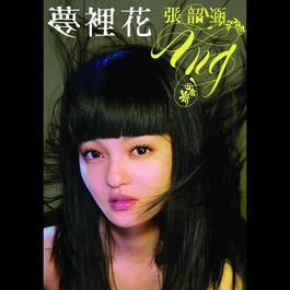 夢裡花 2008 张韶涵