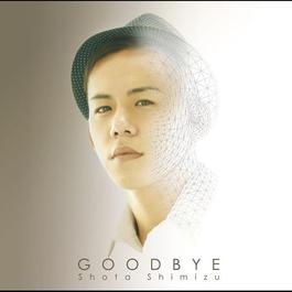 Goodbye 2010 Shimizu Shota