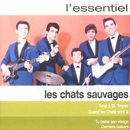 L'essentiel 2003 Les Chats Sauvages
