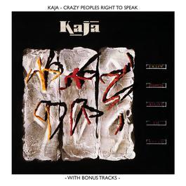 Crazy People's Right To Speak 2004 Kaja