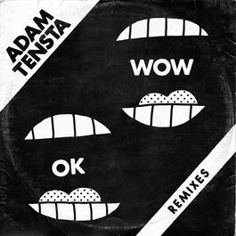 OK Wow 2010 Adam Tensta