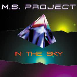 In The Sky 2010 Ms Project