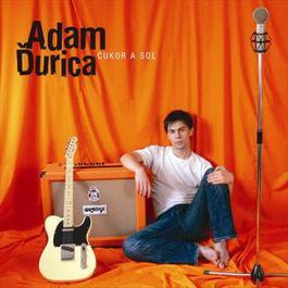 Cukor a sol 2008 Adam Durica