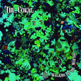 Walking In The Winter 2010 The Coral