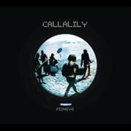 Fisheye 2008 Callalily