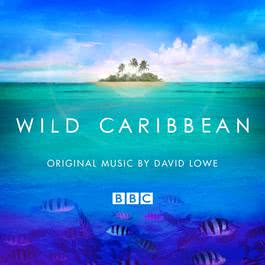 Wild Caribbean - Original Music By David Lowe 2007 Various Artists