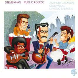 Public Access 1990 Steve Khan