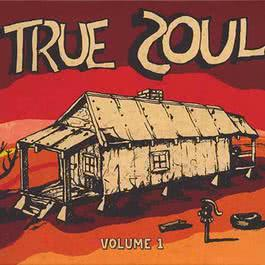 True Soul: Deep Sounds from the Left of Stax Vol. 1 2011 Various Artists
