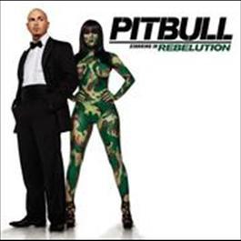 Hotel Room Service 2009 Pitbull