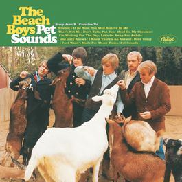 Pet Sounds 2001 The Beach Boys