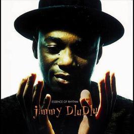 Essence of Rhythm 2007 Jimmy Dludlu