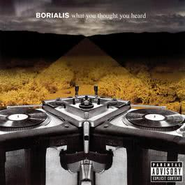 What You Thought You Heard 2004 Borialis