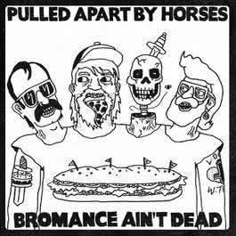 Bromance Ain't Dead 2012 Pulled Apart By Horses