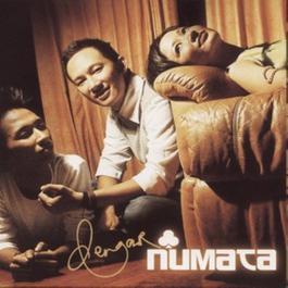 Dengar Numata 2004 NUMATA