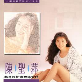 It'S My Fault To Think You Are So Good 1990 陈圣萍