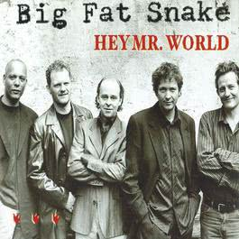 Hey Mr. World 2004 Big Fat Snake