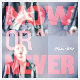 Now Or Never EP 2012 Roma Kenga