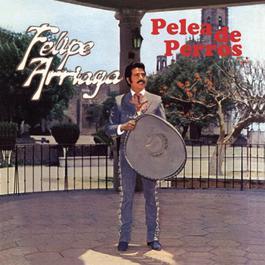 Pelea De Perros 2010 Felipe Arriaga