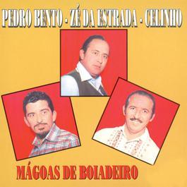 Magoas De Boiadeiro 2006 Pedro Bento, Z Da Estrada E Celinho