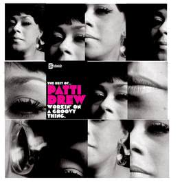 Workin' On A Groovy Thing....The Best Of 2007 Patti Drew