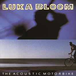 The Acoustic Motorbike 2009 Luka Bloom