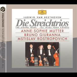 Beethoven:The String Trios 1997 Various Artists