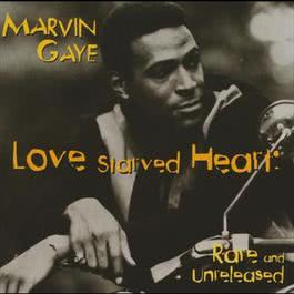 Love Starved Heart: Rare And Unreleased 1995 Marvin Gaye