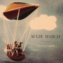 Strange Bird 2010 Augie March