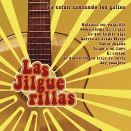 Tesoros De Coleccion / 3 Discos Originales De Las Jilguerillas 2011 Las Jilguerillas