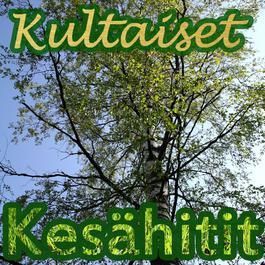 Kultaiset Kesähitit 2011 Various Artists