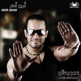 Omri Behalo 2008 Amir Adam