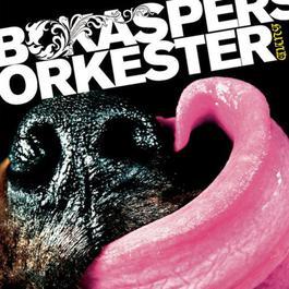 Hund 2006 Bo Kaspers Orkester