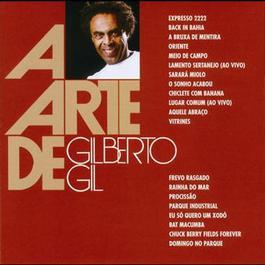 A Arte De Gilberto Gil 2008 Gilberto Gil