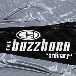 Ordinary (Online Music) 2002 Buzzhorn
