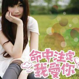 命中注定我爱你  电视原声带 2008 Various Artist