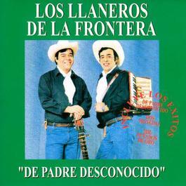 Ni Por Mil Puñados De Oro 2013 Los Llaneros De La Frontera
