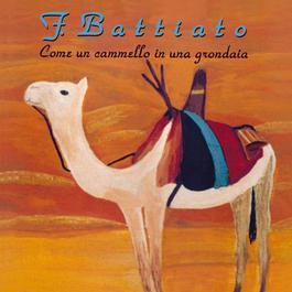 Come Un Cammello In Una Grondaia 2008 Franco Battiato
