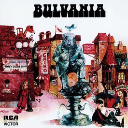 Bulvania 2004 Hullujussi