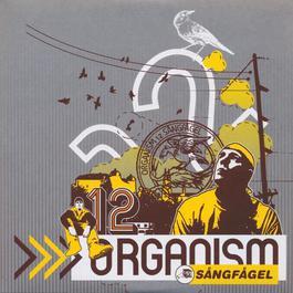Sångfågel 2004 Organism 12