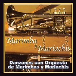 Danzones Con Orquesta de Marimbas y Mariachis 2010 Marimba y Mariachis