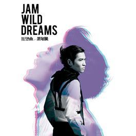 Jam Wild Dreams 2011 萧敬腾