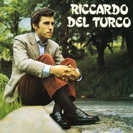 Cosa hai messo nel caffè? 2004 Riccardo Del Turco