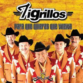 La empanadita 2004 Los Tigrillos