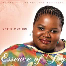 The Essence Of Joy 2009 Andile Mseleku