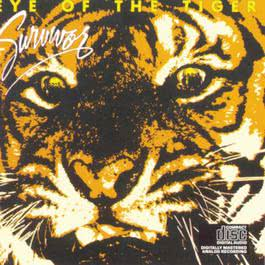 Eye Of The Tiger 1999 Survivor