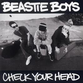 Check Your Head 1992 Beastie Boys